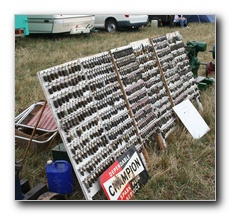 A large display of Spark Plugs